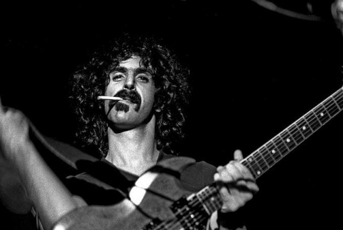 Zappa stache